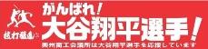 大谷翔平選手ふるさと応援団HP(奥州市)